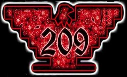 209tracyx4